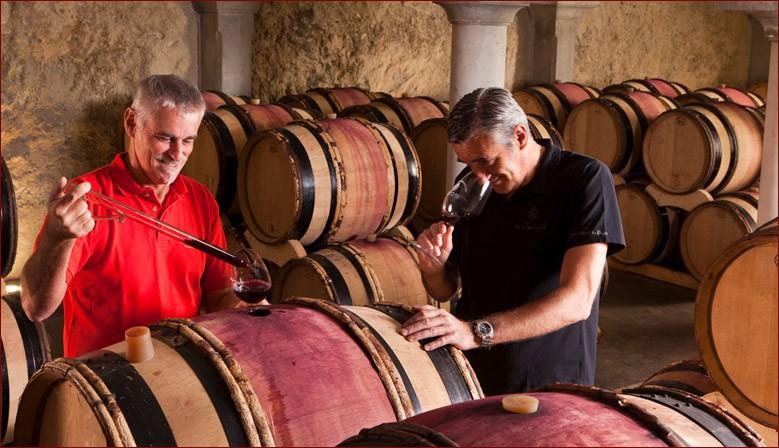 Daniel et Frédéric COULON dégustent régulièrement les vins en fûts durant l'élevage