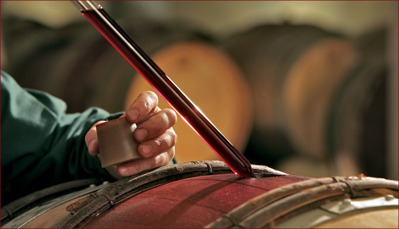 Daniel prélève du vin dans un fût, à la pipette, afin de le déguster